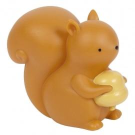 Little light - Squirrel
