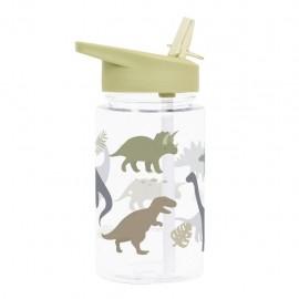 Water bottle - dinosaurs