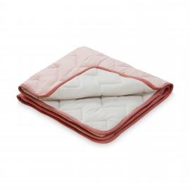 Baby blanket Swan