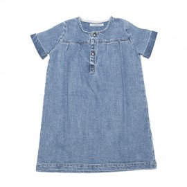 denim dress - rawhide